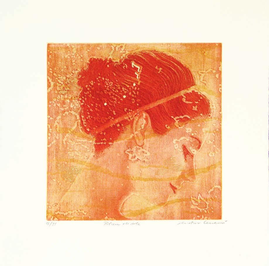 polvere di sole (arancio) – polvere di sole